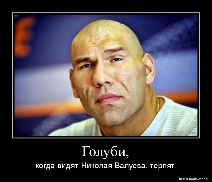 Голуби, - когда видят Николая Валуева, терпят.