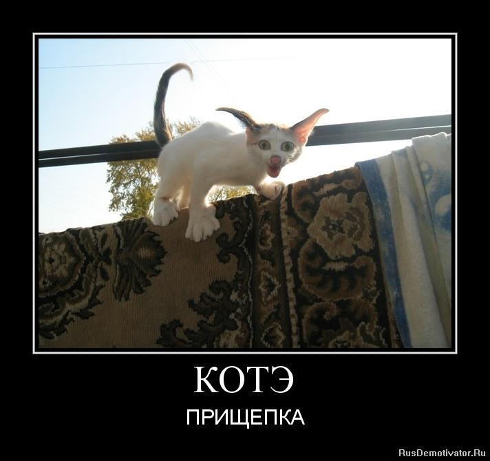 Ксения бородина биография родители фото знала