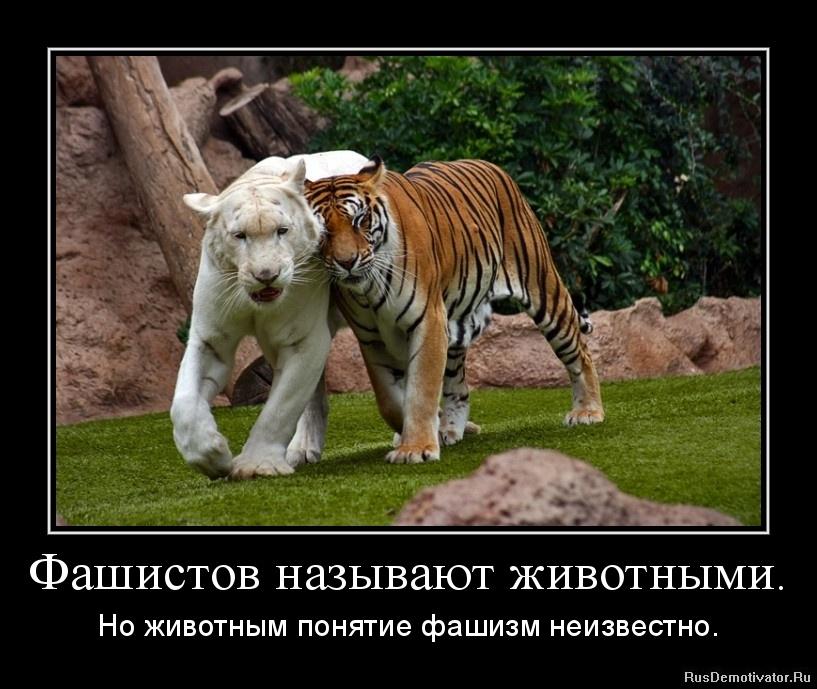 Фашистов называют животными. - Но животным понятие фашизм неизвестно.