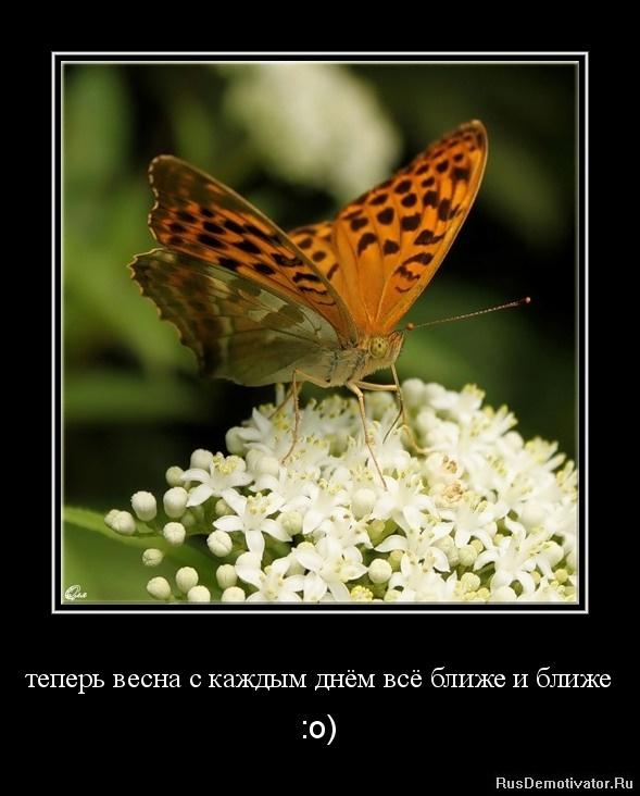 теперь весна с каждым днём всё ближе и ближе - :о)