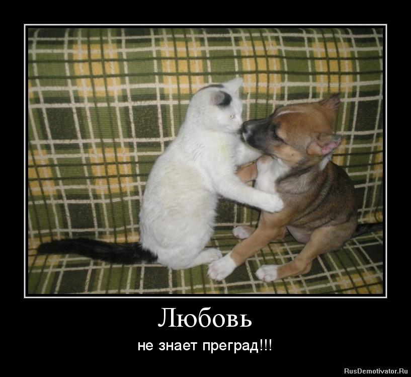 Любовь - не знает преград!!!