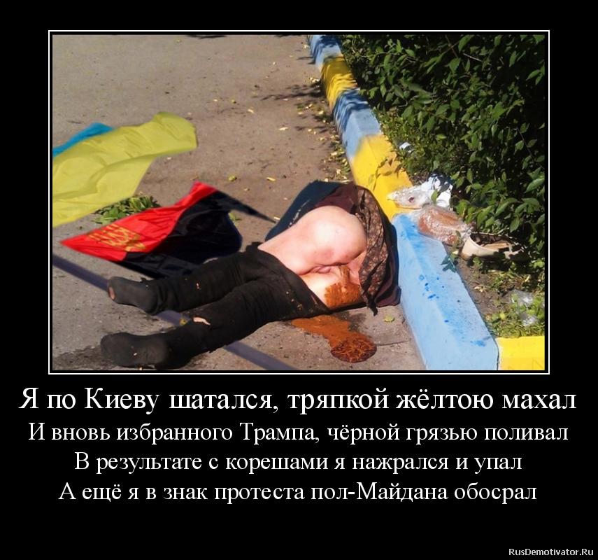 Я по Киеву шатался, тряпкой жёлтою махал И вновь избранного Трампа, чёрной грязью поливал В результате с корешами я нажрался и упал А ещё я в знак протеста пол-Майдана обосрал