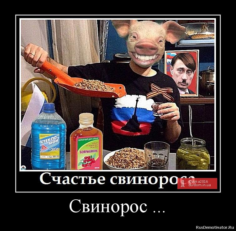 Свинорос ...