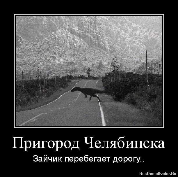Пригород Челябинска - Зайчик перебегает дорогу..