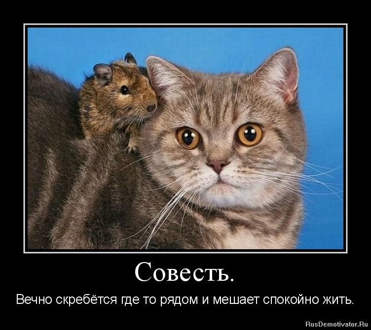 Будет очень лучший педагогический вуз россии думал