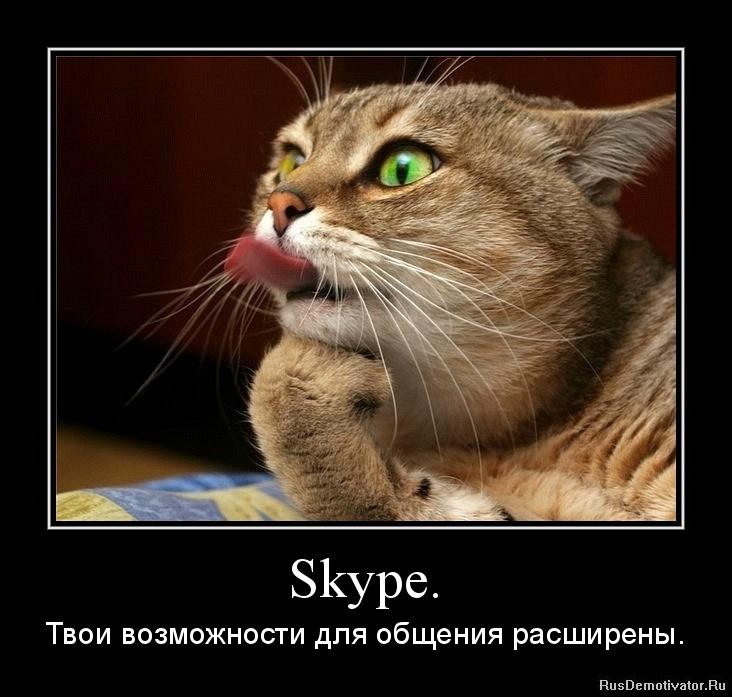 Приколы в скайпе, бесплатные фото ...: pictures11.ru/prikoly-v-skajpe.html