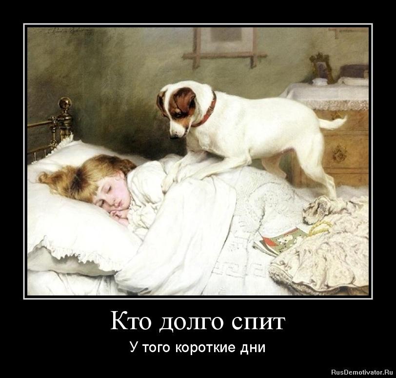 Кто долго спит - У того короткие дни