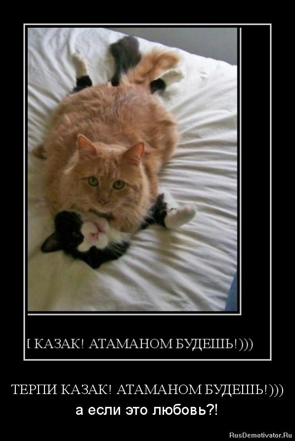 ТЕРПИ КАЗАК! АТАМАНОМ БУДЕШЬ!))) - а если это любовь?!