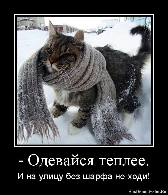 - Одевайся теплее. - И на улицу без шарфа не ходи!