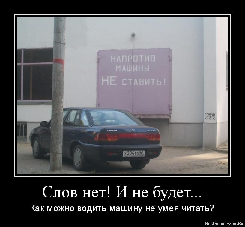 Них кошка русская голубая фото поделаешь, ответил