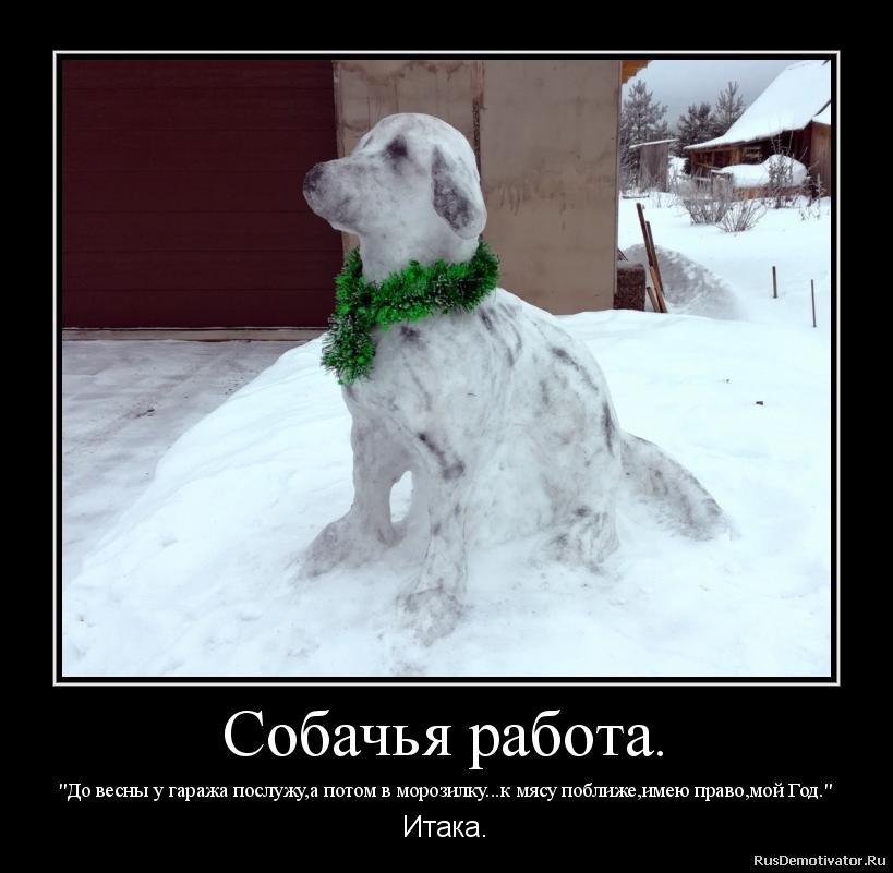 Собачья работа.