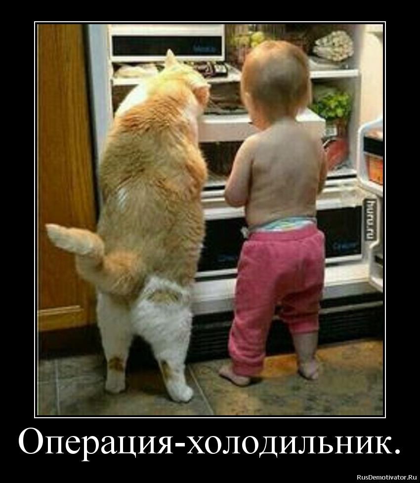Операция-холодильник.