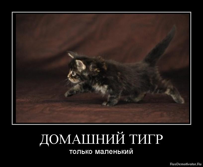 Крипипаста комиксы на русском тут