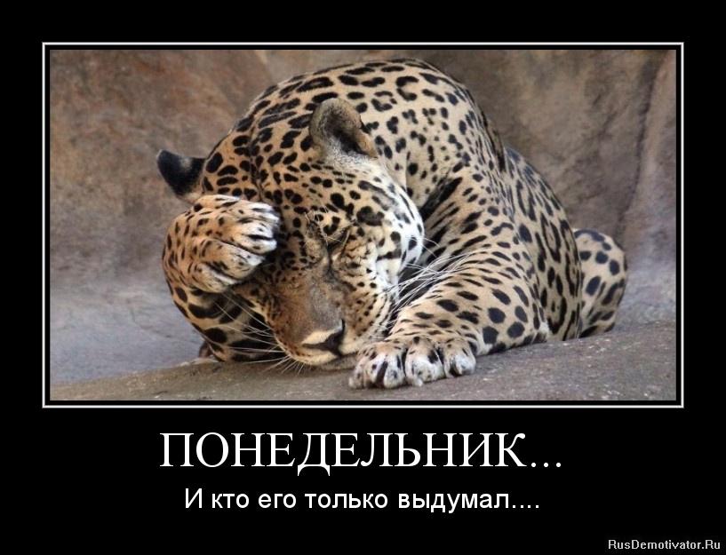 Канал украина смотреть онлайн прямой эфир посмотрел