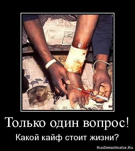 Только один вопрос! - Какой кайф стоит жизни? » Демотиваторы по ...