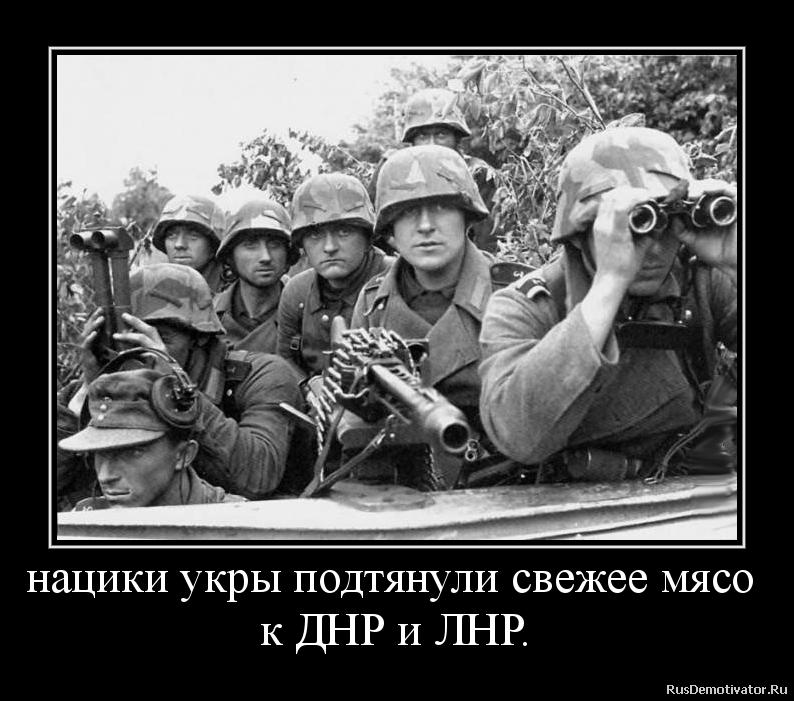 нацики укры подтянули свежее мясо  к ДНР и ЛНР.