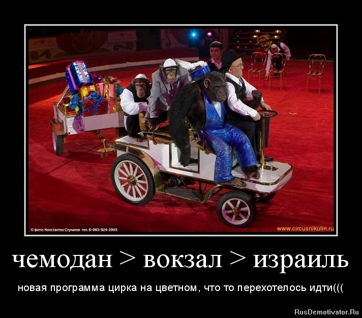 чемодан > вокзал > израиль - новая программа цирка на цветном, что то перехотелось идти(((