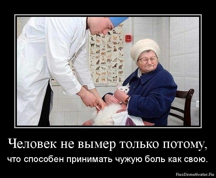 Человек не вымер только потому, - что способен принимать чужую боль как свою.