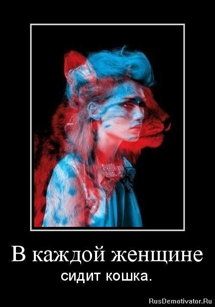 В каждой женщине - сидит кошка.