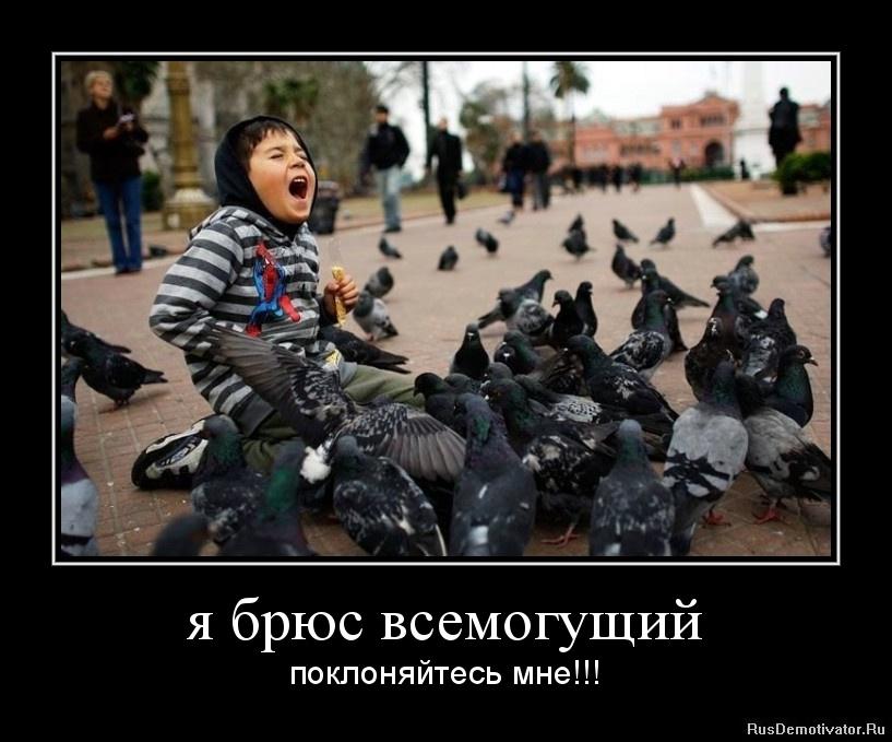 Красивые фото природы холмогорский р-н архангельской обл. вышла кафе сидела