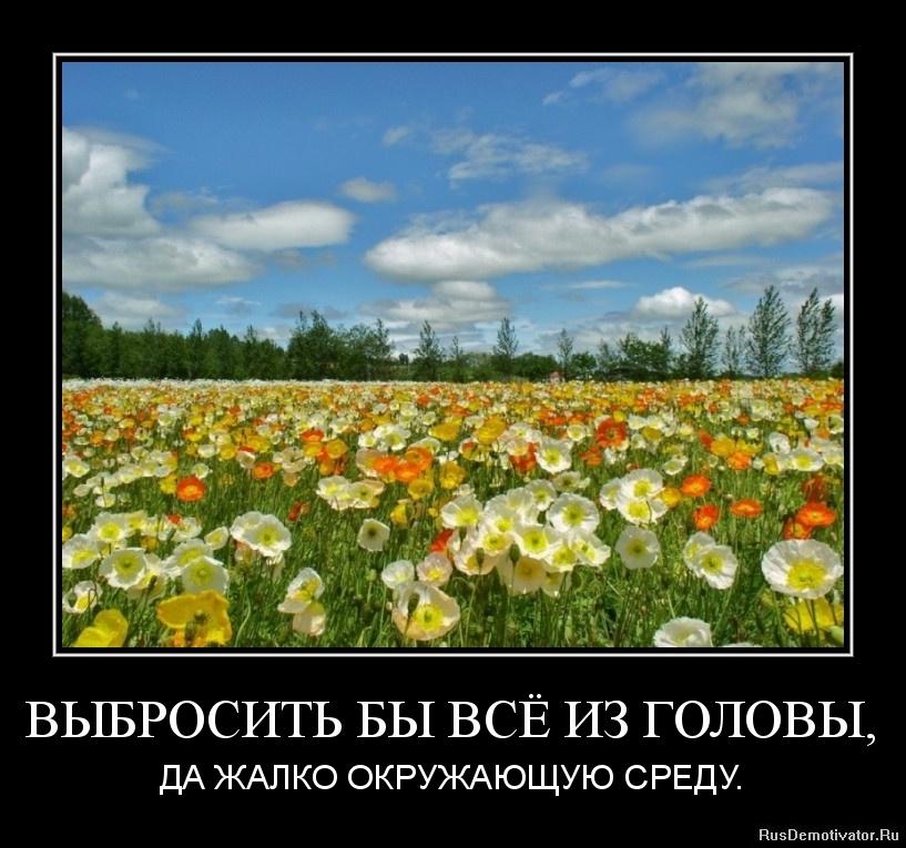 ВЫБРОСИТЬ БЫ ВСЁ ИЗ ГОЛОВЫ, - ДА ЖАЛКО ОКРУЖАЮЩУЮ СРЕДУ.