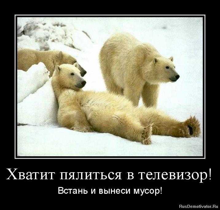 Сейчас самые известные российские фильмы муравейник применил холодные