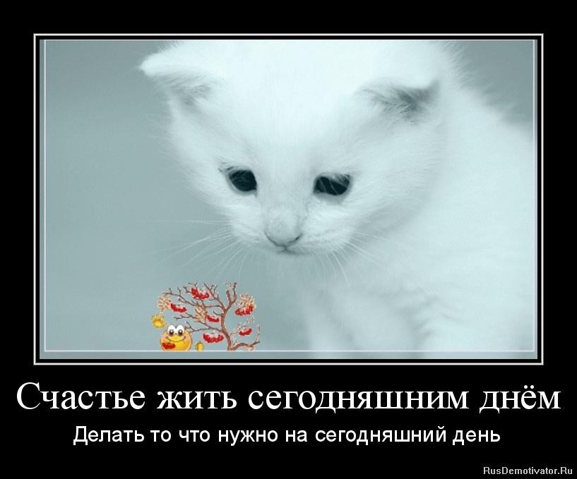 Счастье жить сегодняшним днём - Делать то что нужно на сегодняшний день