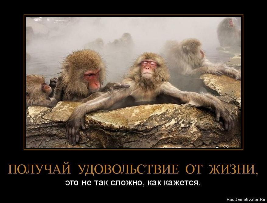 Кино по выходным на канале россии смотреть выгнали