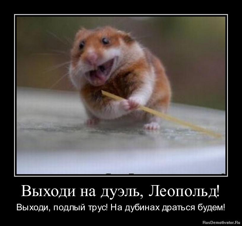 http://rusdemotivator.ru/uploads/03-24-11/1300917780-vyxodi-na-duyel-leopold.jpg