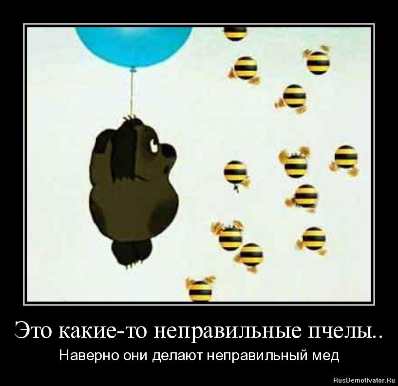 Это какие-то неправильные пчелы.. - Наверно они делают неправильный мед