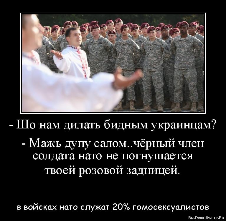 - Шо нам дилать бидным украинцам?  - Мажь дупу салом..чёрный член солдата нато не погнушается твоей розовой задницей.  - в войсках нато служат 20% гомосексуалистов