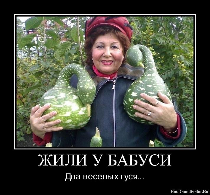 ЖИЛИ У БАБУСИ - Два веселых гуся...
