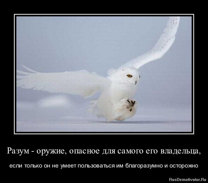Разум - оружие, опасное для самого его владельца, - если только он не умеет пользоваться им благоразумно и осторожно