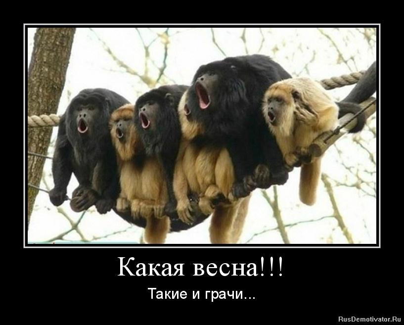 Самые известные княжеские роды россии шарики