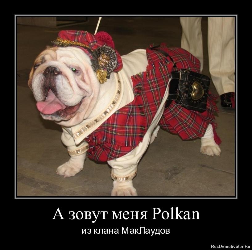 А зовут меня Polkan - из клана МакЛаудов
