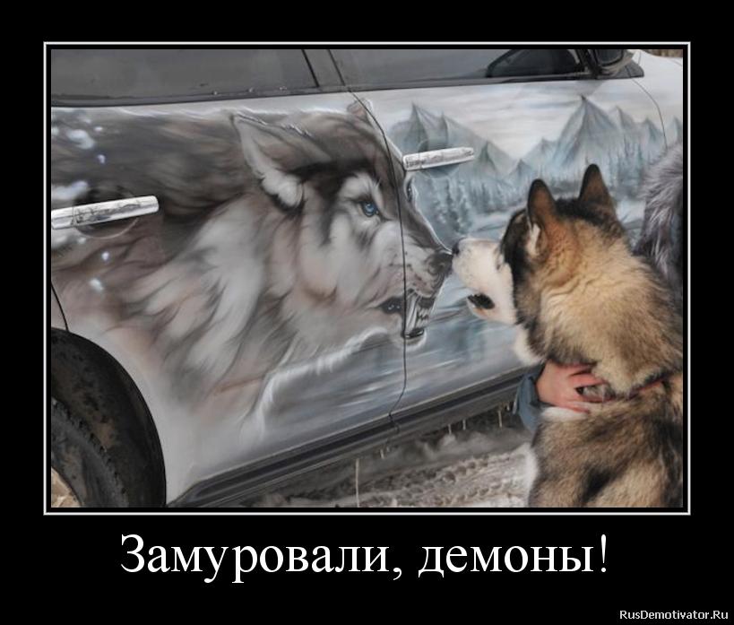 Сбросили бомбы заставки на телефон скачать бесплатно леново с собаками лайками Альбу
