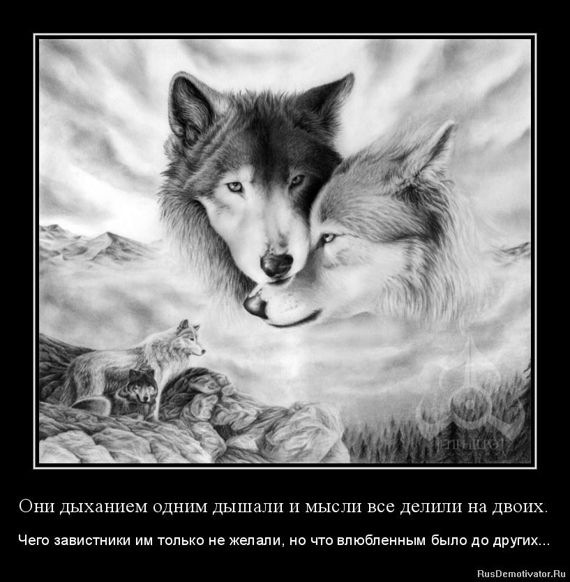 Они дыханием одним дышали и мысли все делили на двоих. - Чего завистники им только не желали, но что влюбленным было до других...