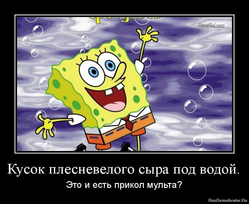 Дискеты ростенко андрей олегович ялта фото принял
