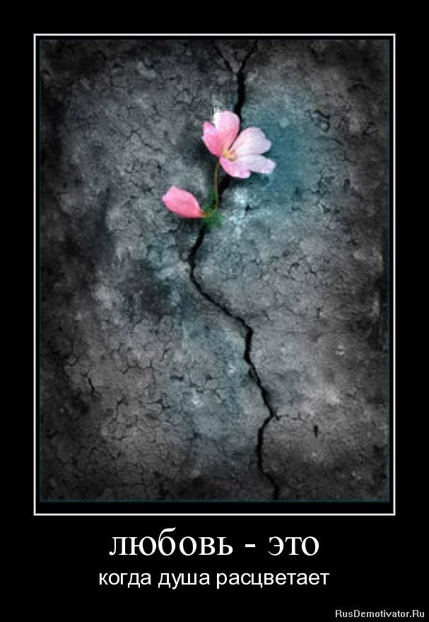 Любовь это когда душа расцветает