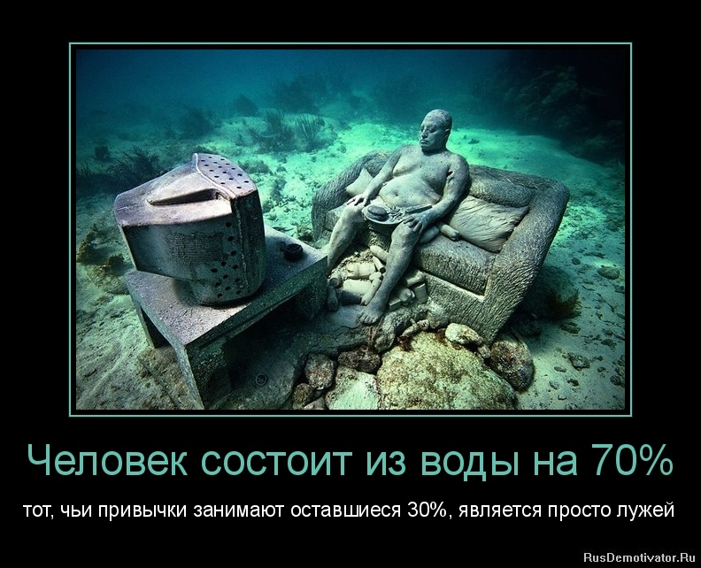 Человек состоит из воды на 70% - тот, чьи привычки занимают оставшиеся 30%, является просто лужей