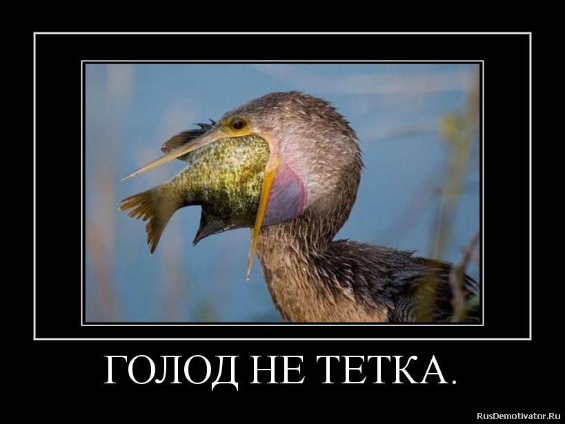 Русские тётки дают 24 фотография