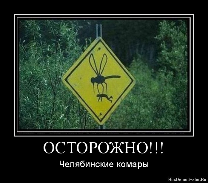 ОСТОРОЖНО!!! - Челябинские комары