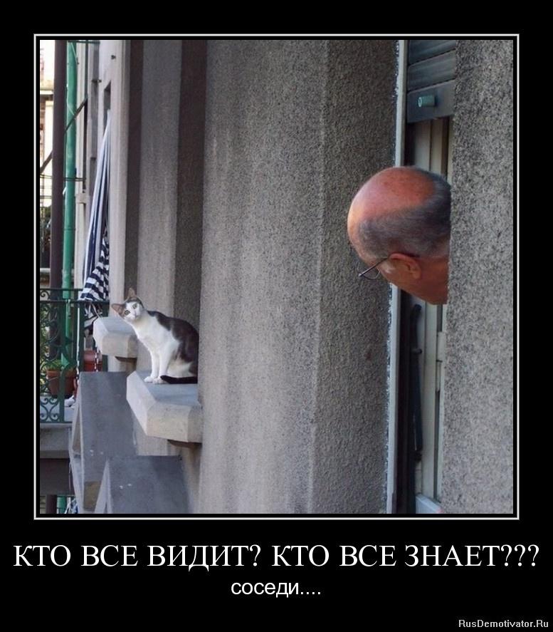 Вобла жареная рецепт с фото Вадим начал воровать