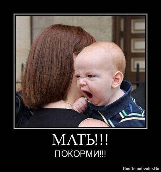 МАТЬ!!! - ПОКОРМИ!!!