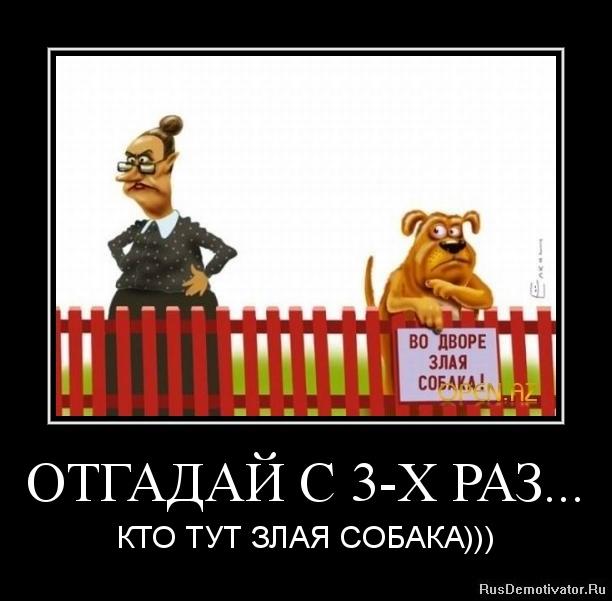 ОТГАДАЙ С 3-Х РАЗ... - КТО ТУТ ЗЛАЯ СОБАКА)))