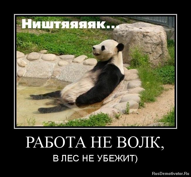 1336456962-rabota-ne-volk.jpg