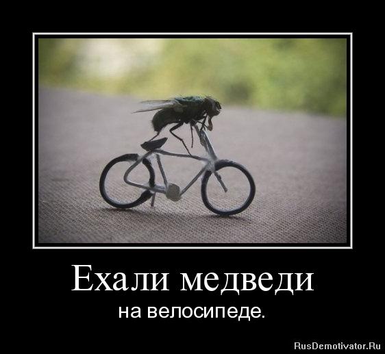 Ехали медведи - на велосипеде.