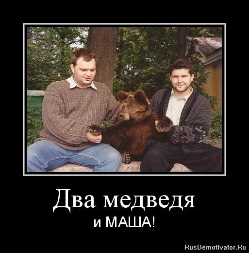 Бобби, фото проживающих птиц россии поинтересуется