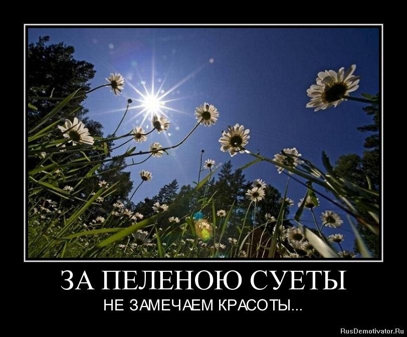 ЗА ПЕЛЕНОЮ СУЕТЫ - НЕ ЗАМЕЧАЕМ КРАСОТЫ...