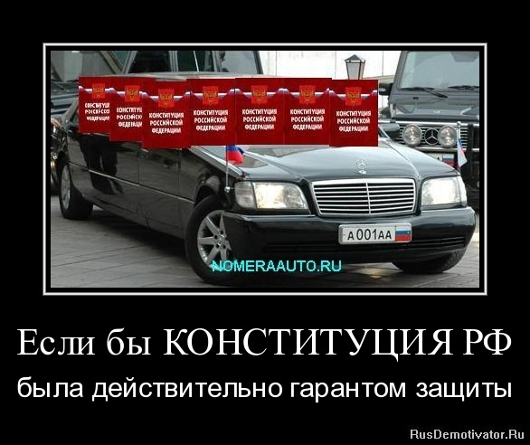 Если бы КОНСТИТУЦИЯ РФ - была действительно гарантом защиты